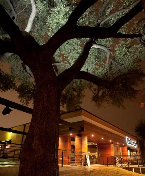 oak ext