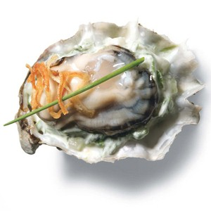 oyster_2