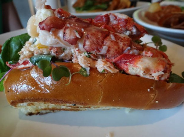 lobster roll east hampton