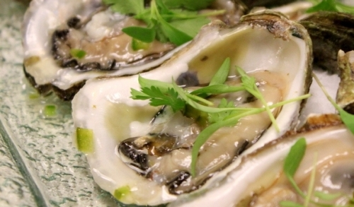ser oyster