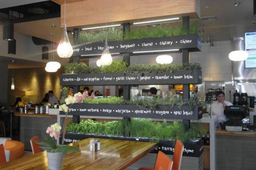 Lyfe Kitchen Opening Three Locations In Dallas Area Cravedfw