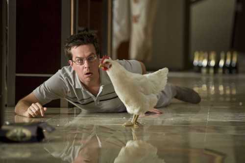 "Stu (ED HELMS) wakes up with a hangover and finds a chicken in his hotel room in Warner Bros. Pictures' and Legendary Pictures' comedy ""The Hangover,"" a Warner Bros. Pictures release. PHOTOGRAPHS TO BE USED SOLELY FOR ADVERTISING, PROMOTIONAL, PUBLICITY OR REVIEWS OF THIS SPECIFIC MOTION PICTURE AND TO REMAIN THE PROPERTY OF THE STUDIO. NOT FOR SALE OR REDISTRIBUTION."