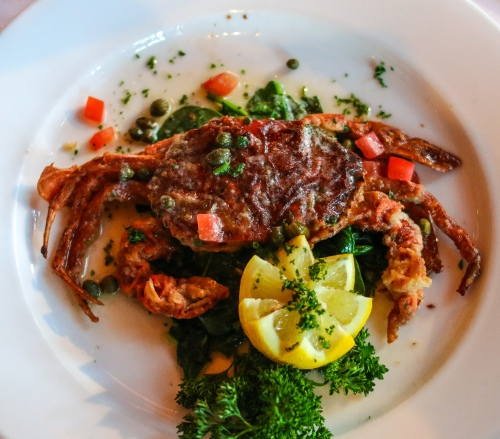 Soft Shell Crab 1