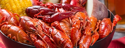 crawfish.jpeg